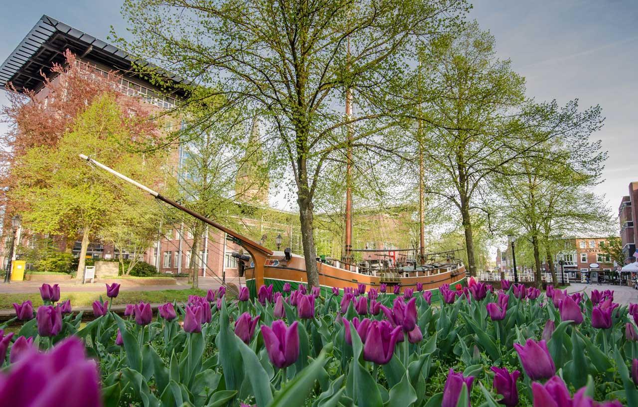 Blumenschau Papenburg